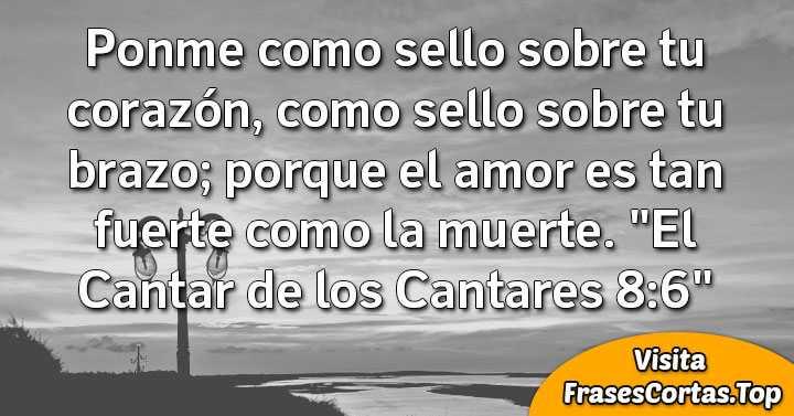 Frases Cristianas Cortas De Dios De Amor Animo Y Aliento