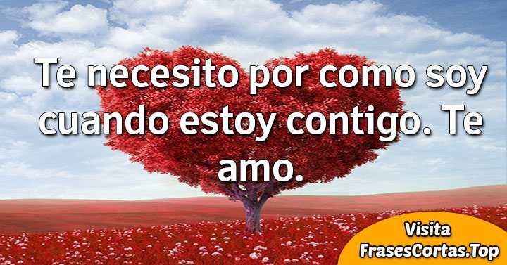 Frases De Amor Cortas Bonitas Y Románticas Para Novio Y Novia