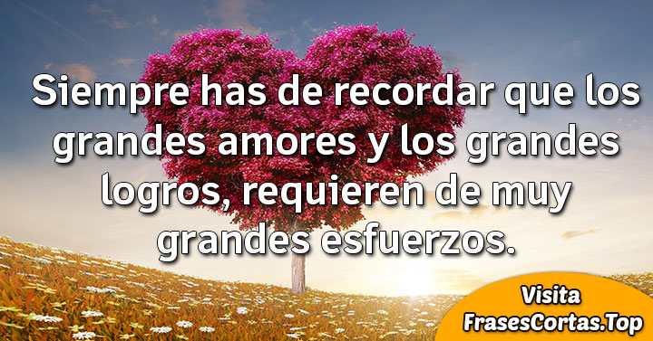 Frases De Amor Cortas Bonitas Y Románticaspara Novio Y
