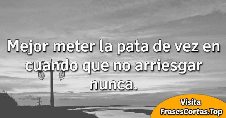 frases mr wonderful de motivación